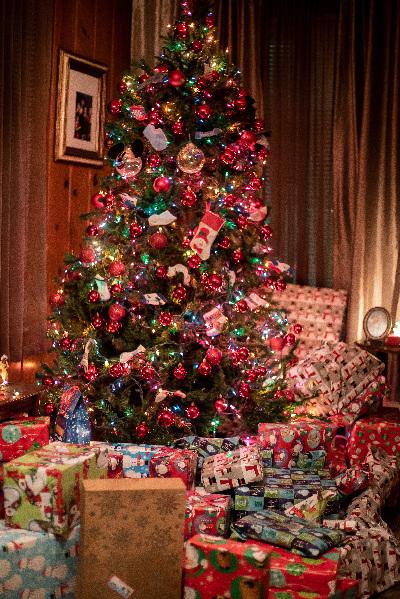 Christmas Tree Disposal